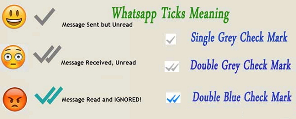Different Ticks on WhatsApp