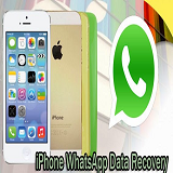 Back up and Restore WhatsApp Messages