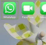 Export WhatsApp Messages via Email on iPhone