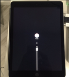 Get iPad out of Recovery Mode