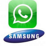 Recover Samsung WhatsApp