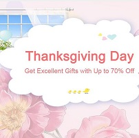 Thanksgiving Day Sales & Promotion